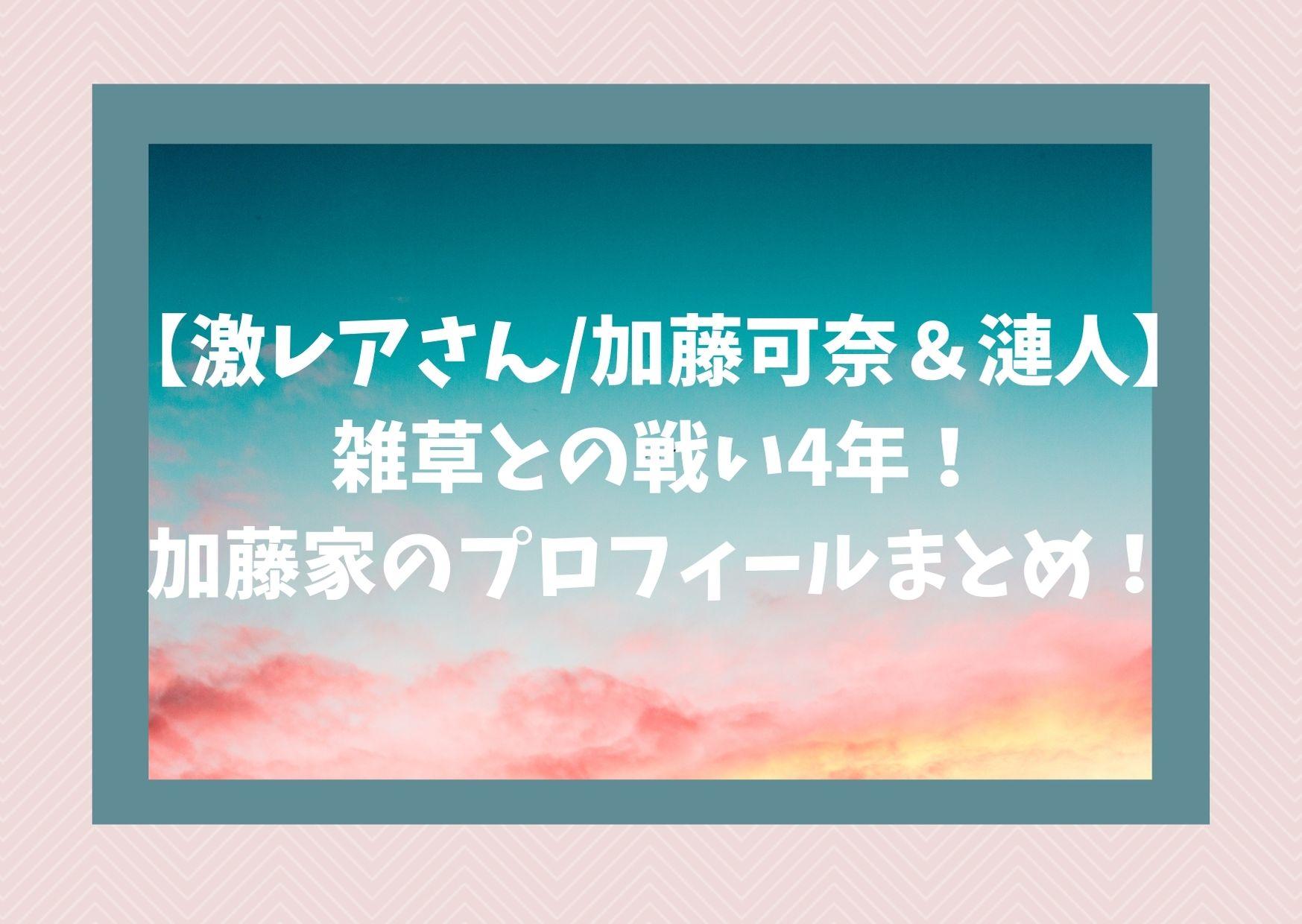 【激レアさん/加藤可奈&漣人】雑草との戦い4年!加藤家のプロフィールまとめ!