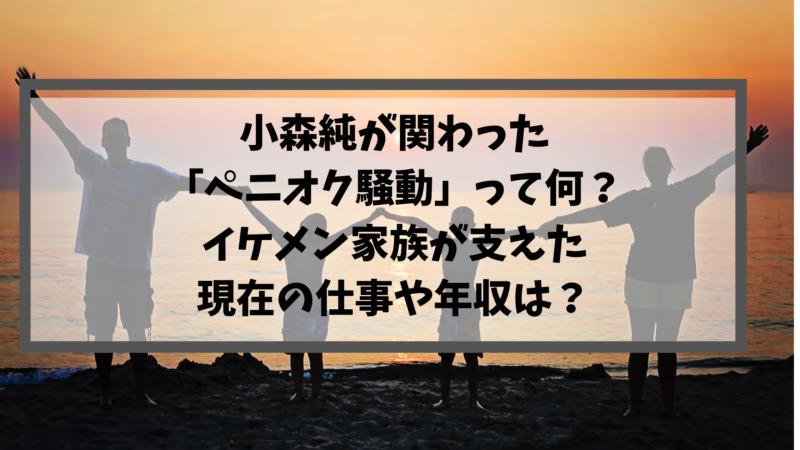 小森純が関わった「ペニオク騒動」って何?イケメン家族が支えた現在の仕事や年収は?